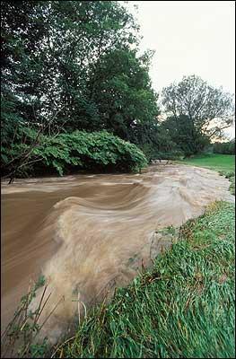 Wilmslow Minor Flooding