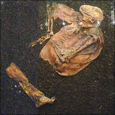 The Discovery and Analysis of Lindow Man